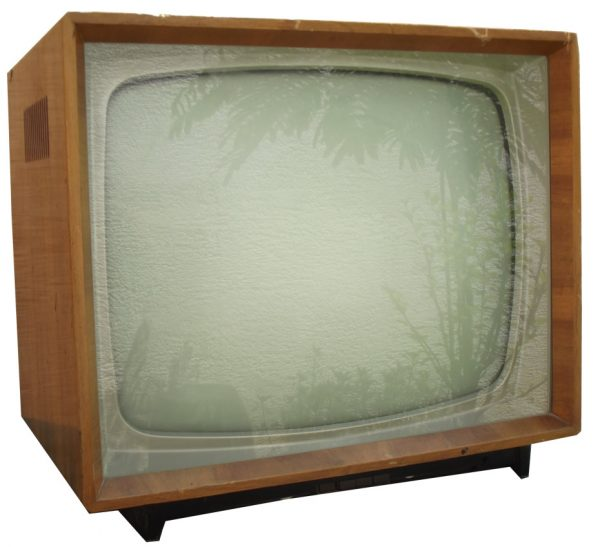RR TV 865